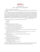 16 bo det thi ngu van 9 ky II(co dap an)