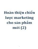 hoàn thiện chiến lược marketing cho sản phẩm mới(2)