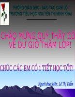Ôn tập Tiếng Việt tiết 6