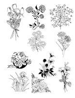 TRANH MẪU - Flower