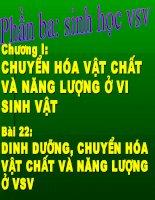 dinh duong chuyen hoa vat chat va nang luong o vsv