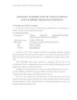 VITECO COMPANY AND ITS IMPORT OPERATION EFFICIENCY