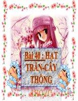 GVBM HUYNH THI HOANG OANH -TRUONG THCS DINH THANH -THOAI SON-AN GIANG