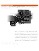 Chương 12 tao nhung hieu ung dac biet trong photoshop