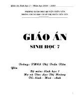GIAO AN SINH 7 MOI