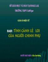 TINH CANH LE LOI CUA NGUOI CHINH PHU_ NV10
