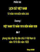 Lịch sử Việt Nam từ 1919-1930