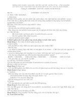 giáo án 11 nâng cao - chương 9