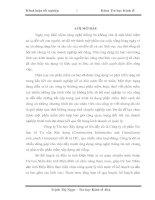 XÂY DỰNG PHẦN MỀM QUẢN LÝ NGUỒN VỐN DỰ ÁN ĐẦU TƯ TẠI SỞ KẾ HOẠCH VÀ ĐẦU TƯ TỈNH ĐIỆN BIÊN