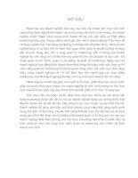 MỘT SỐ MÔ HÌNH VÀ GIẢI PHÁP HÌNH THÀNH PHÁT TRIỂN TỔ CHỨC MARKETING Ở CÁC DOANH NGHIỆP THƯƠNG MẠI TRÊN ĐỊA BÀN HÀ NỘI