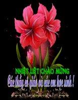 LTVC- Tu ngu ve muong thu Dat va tra loi cau hoi nhu the nao