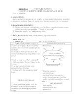 Giáo án tiếng anh 8 Học kì II (Unit 10)