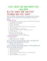 TỐT NGHIỆP BỔ TÚC THPT_2.CẤU TRÚC ĐỀ THI MÔN VĂN năm 2009_