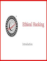 [CEH V3] Ethical Hacking - Introduction