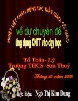 081110_Ve doan thang cho biet do dai - Tiet 11_Toan 6.ppt
