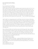 Luyện thi: Các vị La Hán chùa Tây Phương