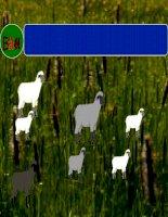 Bài 44: Sinh sản vô tính ở động vật