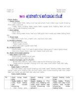 Bài 11: Sự hút nước và muối khoáng của rễ (tt)