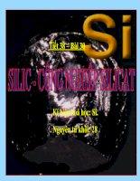 Silic- Công nghiệp silicat