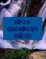 vo chong a phu 1