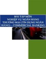 BÀI TẬP MÔN NGHIỆP VỤ NGÂN HÀNG THƯƠNG MẠI (TÍN DỤNG NGÂN HÀNG) – COMMERCIAL BANKING