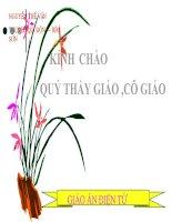 GAĐT THAO GIẢNG - PHÉP CHIA PHÂN SỐ