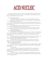 Acid nucleic