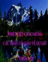 Tiết 62: Ôn tập Tiếng Việt