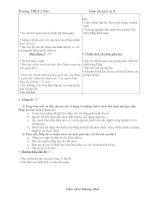 Giáo án lịch sử lớp 8 (từ tiết 46-48)