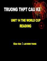 unit 14 reading