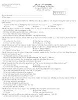 Đề kiểm tra trắc nghiệm Ngữ văn 11 HK II