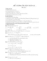 dề cương toán 12