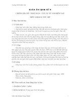 giáo án sử lớp 9, bài 8