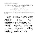 Đề thi tham khảo chữ viết