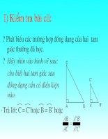 Chương III - Bài 8: Các trường hợp đồng dạng của tam giác vuông