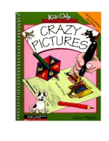 crazy pictures (classroom activities)