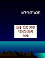 Bài 1: Tổng quan về Microsoft Word
