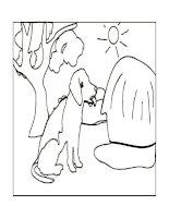 Bài vẽ về con vật