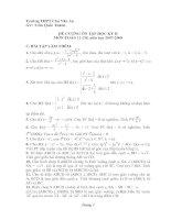 Đề cương, bài tập ôn tập Toán 11 học kỳ II