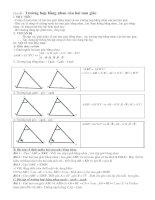 Tự chọn : Bài tập về trường hợp bằng nhau của hai tam giác