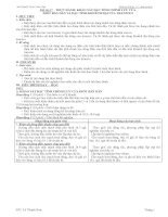 GIÁO ÁN 11B HỌC KỲ II