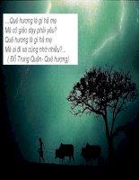 Những câu hát về tình yêu quê hương đất nước con người