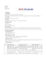Bài 29 Các loại hoa