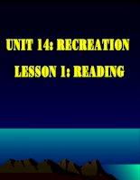 Unit 14: Reading