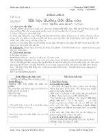 Giáo án Ngữ văn 6 HK II