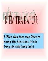 Bài 23: Vùng B ác Trung Bo