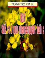 TIẾT 39-sơ lược về bảng tuần hoàn các nguyên tố hóa học