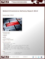 Global E-Commerce Delivery Report 2012