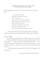 Đề thi HSG  - Văn  Lớp 6