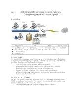 Giới thiệu hệ thống Mạng Domain Network